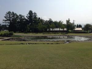 美術館の池